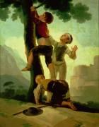 Jeunes garçons grimpant a l'arbre (Francisco de Goya) - Muzeo.com