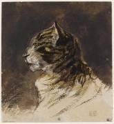 Tête de chat (Delacroix Eugène) - Muzeo.com