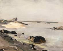 Bord de mer à Audresselles (Carolus-Duran) - Muzeo.com