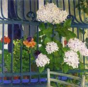 Géraniums (Koloman Moser) - Muzeo.com