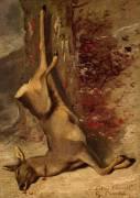 Le chevreuil (Courbet Gustave) - Muzeo.com