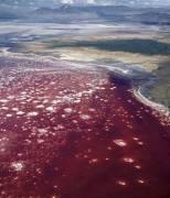 Nord de la Tanzanie, lac Natron (John Warburton-Lee) - Muzeo.com